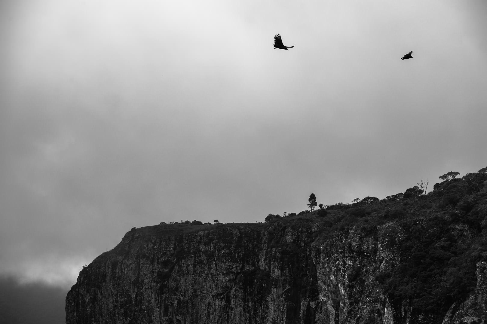 Caminhada no Caminho dos Canyons Viagens e Aventuras  trekking Serra do Rio do Rastro são josé dos Ausentes Kundalini Festival Festival São José dos Ausentes carnaval Canyon Realengo Canyon Amola Faca Caminho dos canyons caminho dos caninos caminhada